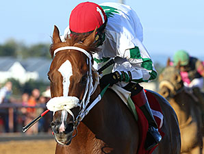 Lucy's Bob Boy wins the 2014 Roger Ramey Handicap.