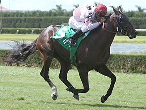 Machisa wins the 2010 Fasig Tipton Turf Dash.