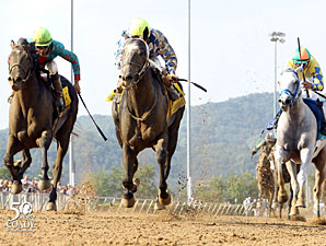 Macho Macho wins the 2012 West Virginia Derby.
