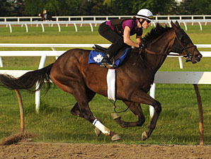 Macho Whiskey - Woodbine June 19, 2012.