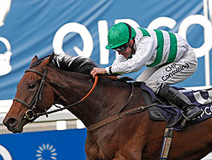 Madame Chiang wins the 2014 Qipco British Champions Fillies & Mares Stakes.