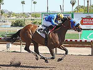 Madame Pele wins the 2014 Mesa Handicap.