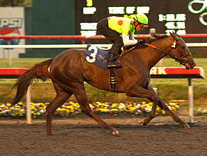Made to Love Her wins the Moccasin.