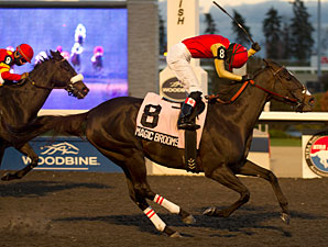 Magic Broomstick wins the 2012 Bessarabian.