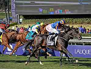 Magician wins the 2013 Breeders' Cup Turf
