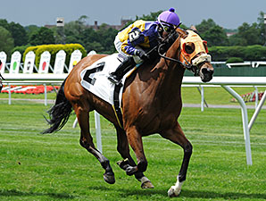 Mah Jong Maddnes wins the 2014 Mount Vernon Stakes.