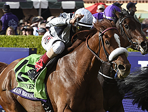 Main Sequence wins the 2014 Longines Breeders' Cup Turf