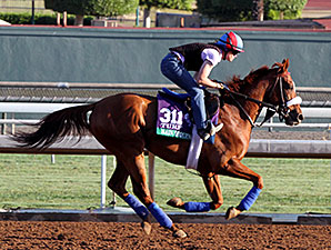 Main Sequence - Breeders' Cup 2014
