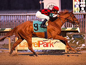 Majestic Affair wins the 2015 Frank Whiteley Jr. Stakes.