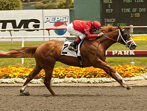 Majestic City wins the 2011 William Proctor Memorial.