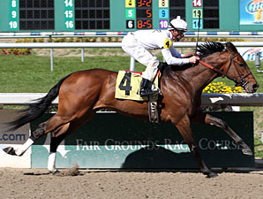 Majestic Harbor Maiden Win 02/12/11
