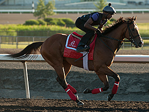 Majestic Sunset at Woodbine, July 1, 2014.