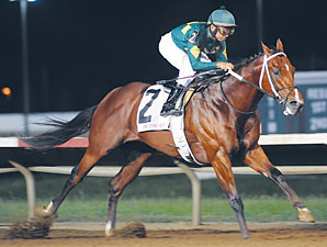 Majesticperfection wins the 2010 Iowa Sprint Handicap.