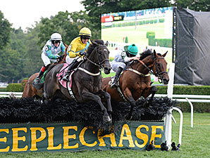 Makari wins the 2014 A. P. Smithwick Memorial Steeplechase Stakes.