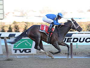"Maleeh wins the 2013 Fred ""Cappy"" Capossela Stakes."