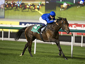 Mandaean wins the 2013 Meydan Beach Trophy.