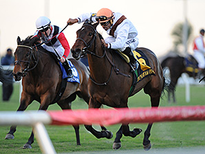 Marbre Rose wins the 2014 South Beach Stakes.