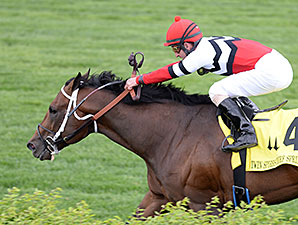 Marchman wins the 2014 Twin Spires Turf Sprint