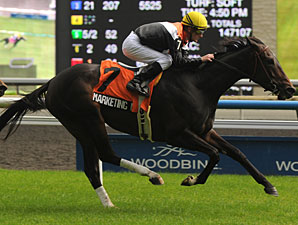 Marketing Mix wins the 2012 Nassau Stakes.