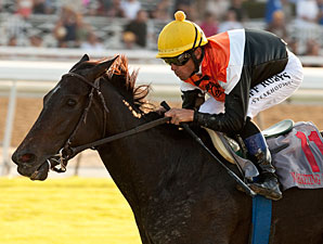 Marketing Mix wins the 2012 Rodeo Drive.
