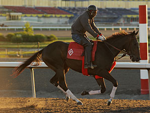Marketing Mix - Woodbine June 2, 2011