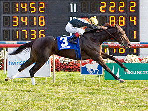 Marketing Mix wins the 2011 Pucker Up.
