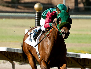 Marks Mine wins the 2013 California State Fair Sprint Handicap.