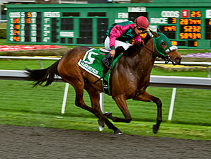 Marks Mine wins the 2012 Golden Gate Debutante.