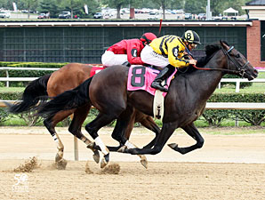 Maybe So wins the 2012 Mountaineer Juvenile.