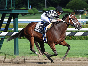 Maybesomaybenot wins the 2010 Sanford.