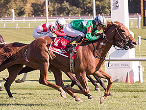 Medea wins the 2014 Lady Baltimore Stakes.
