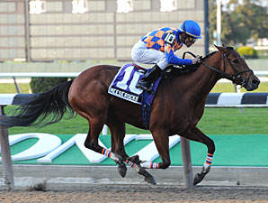 Meese Rocks wins the 2010 Iroquois.