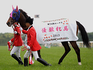Meisho Mambo wins the Yushun Himba in Japan.