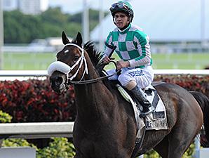 Merry Meadow wins the 2014 Sugar Swirl.