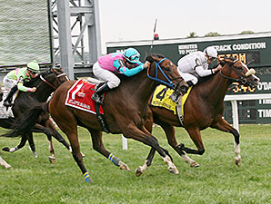 Merry's Honor wins the 2014 Marshall Jenney Handicap.