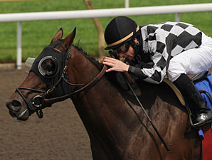 Mesa Cielo wins the 2010 Elgin Stakes.