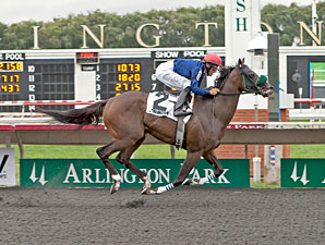 Middie wins the 2012 Washington Park Handicap.