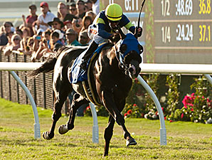 Midnight Storm wins the Del Mar Derby.