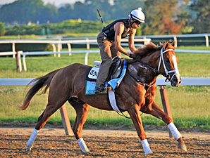 Midnight Taboo - Belmont Park, June 1, 2013.
