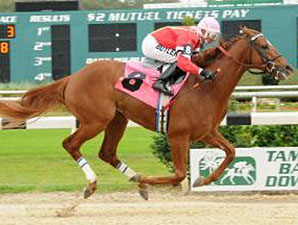 Mighty Brown wins the 2014 Pasco Stakes.