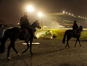 Mikhail Glinka and Bronze Cannon at Woodbine, Oct. 13, 2011.