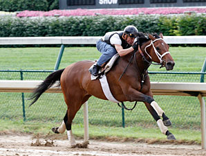 Mine That Bird works at Churchill Downs on June 28, 2010.