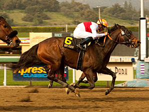 Miss Match wins the 2011 Santa Margarita.