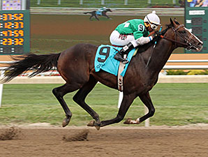 Mister Pollard wins the 2014 Governor's Stakes.