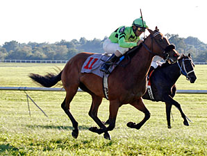 Miz Ida wins the Kentucky Downs Ladies Turf.