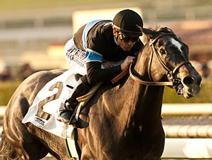 Mizdirection wins the Buena Vista Stakes.