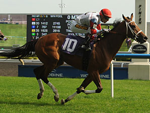 Moment of Majesty wins the 2012 Zadracarta.