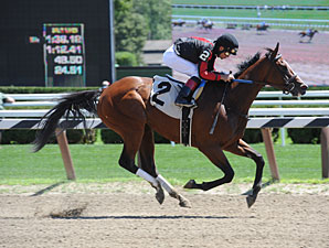Montana Native wins the 2013 Broom Dance Stakes.