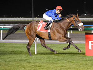 Monterosso wins the 2011 Dubai City of Gold