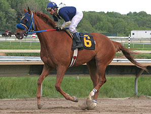 Moon Royal wins the 2010 Lyman Handicap.